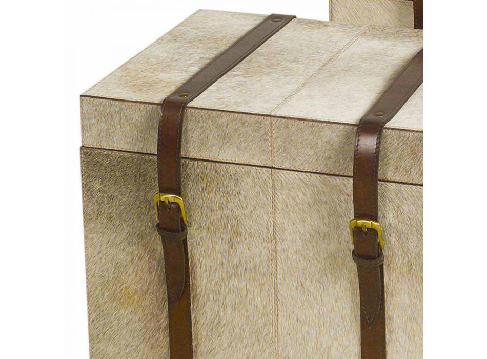 2 design trunks in gray pony Ritini, large and small
