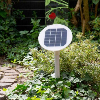 Colored Floor Lamp Led, Solar or E27 Design Outdoor and Indoor - Fungostar
