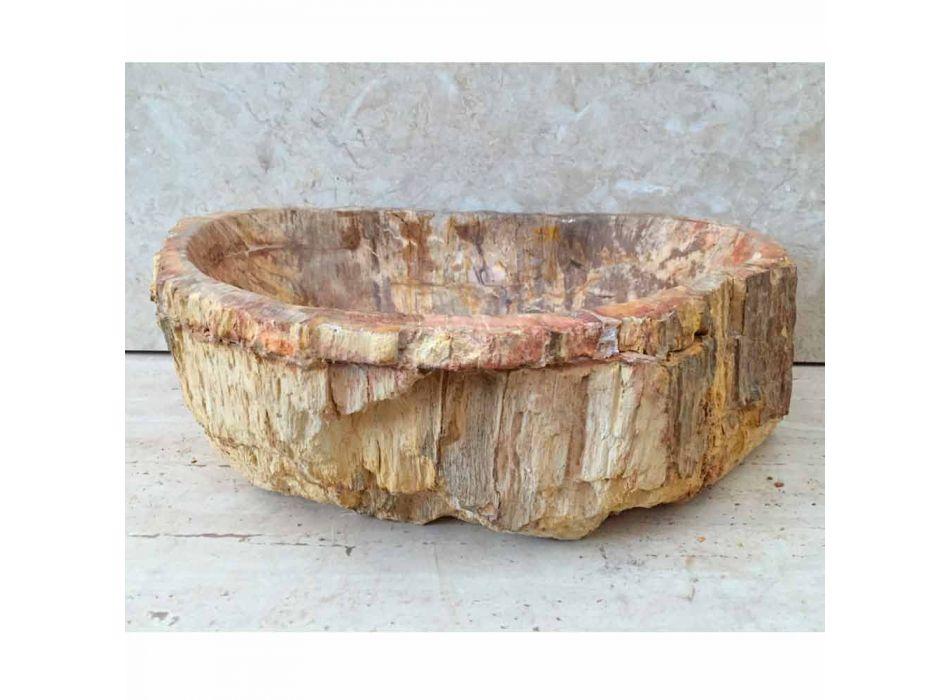 Star standing fossil wood bathroom washbasin, unique piece of design