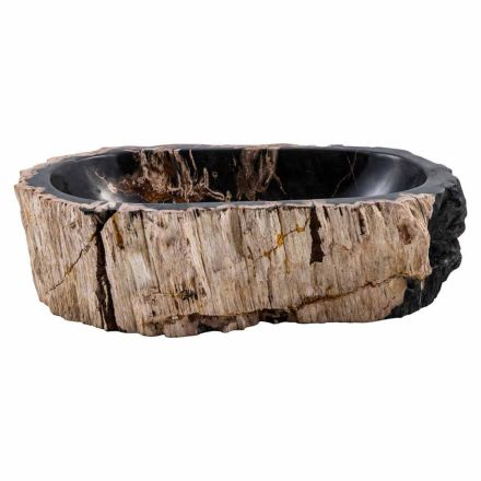 Handmade countertop washbasin in petrified fossil wood, Nettuno