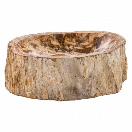 Countertop washbasin handmade of petrified fossil wood, Neviano