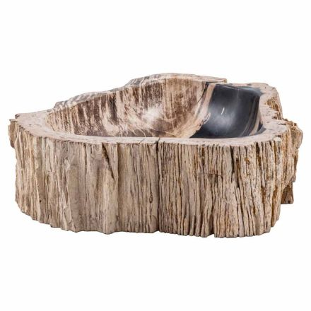Modern countertop washbasin in petrified fossil wood, Nervesa