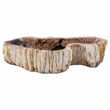 Countertop washbasin handmade of petrified fossil wood, Nemi