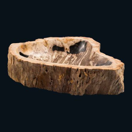 Design countertop washbasin in fossil wood Boris, unique piece