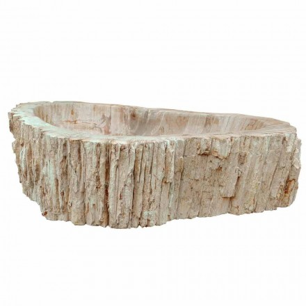 Fossil wood countertop washbasin Goa