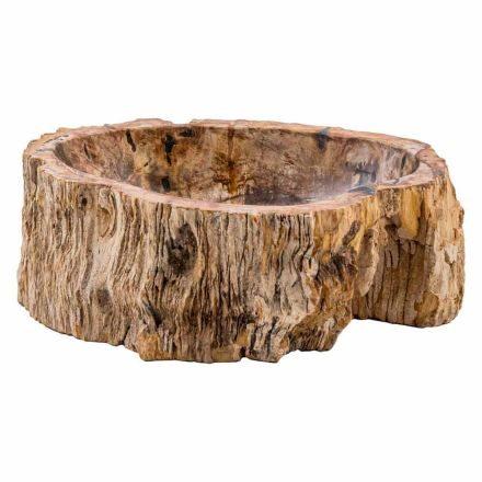 Design countertop washbasin in fossil wood, Narzole, unique piece
