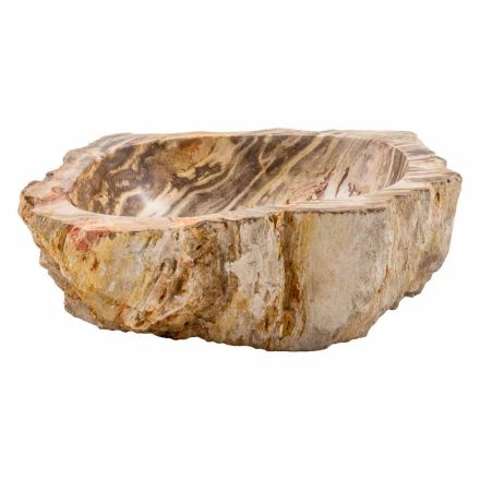 Design countertop washbasin in petrified fossil wood, Niella