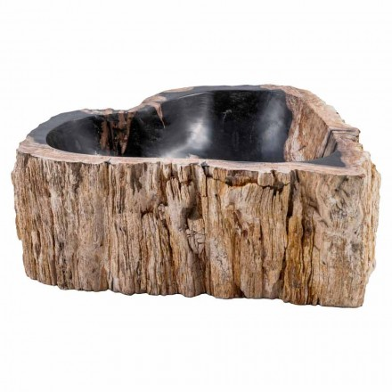 Countertop washbasin made of fossil wood, Neirone, unique piece