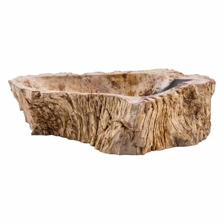 Handmade countertop washbasin in fossil wood, Narbolia, unique piece