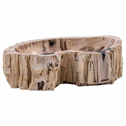 Countertop washbasin handmade of fossil wood, Nicolosi, unique piece