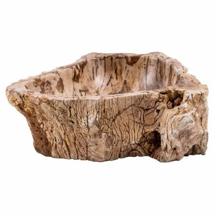 Handmade countertop washbasin in fossil wood, Nibbiola, unique piece