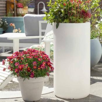 Vase with Garden Lighting or Living Room Colored Modern Design - Cilindrostar