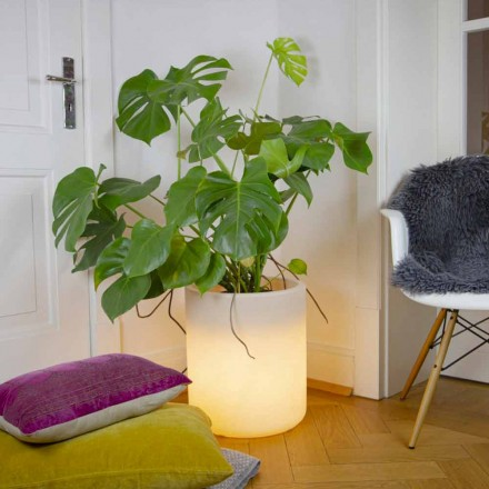 Vase with Garden or Indoor Lighting, Modern Design - Cilindrostar